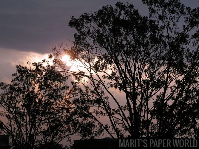 ochtendlucht-na-onweer
